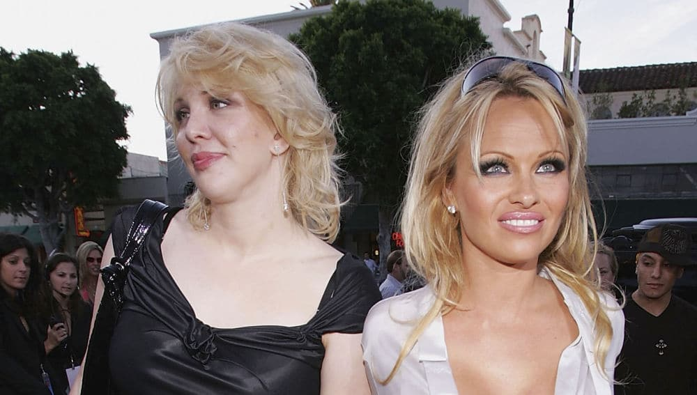 Tommy Lee And Pam Anderson Vid photo 10