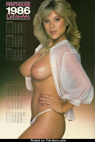Samantha Fox Nude Picture photo 2
